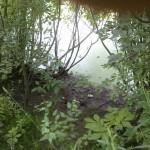 PRE_2011-08-02-184156